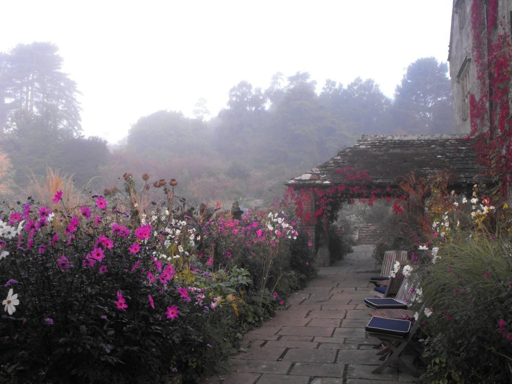 Flower garden fog (1)