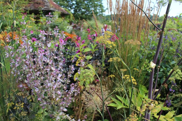 garden blogg 1